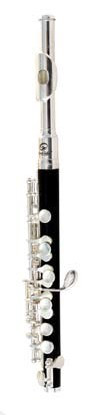 Soundsation C PICCOLO FLUTE model SFP-10